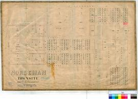 Norseman 88/1. Plan showing Lots in Norseman Townsite. Lots 109-240, Reserve 2890-1897, 3316-3320...