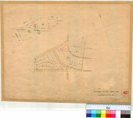 Perth 18S. Plan of Perth Townsite showing Lots V84-109 as marked in October 1855 by F.T. Gregory [scale: 3 chains to an inch, Tally No. 005770].