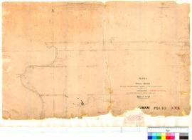 Folio XXX. Survey of Swan River showing boundary marks of several grants, as placed by J.W. Gregory.