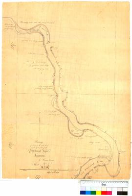 Land on the right bank at lower part of Blackwood River, Sheet 4 by Thomas Turner [Tally No. 0050...