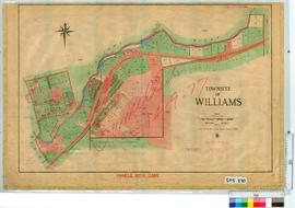 Williams [Tally No. 505270].