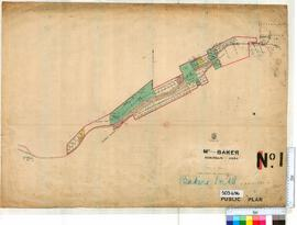 Bakers Hill Sheet 1 [Tally No. 503696].