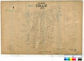 Collie 155/14. Plan of Collie Lots. Henry I. Farrell [scale: 5 chains to 1 inch].