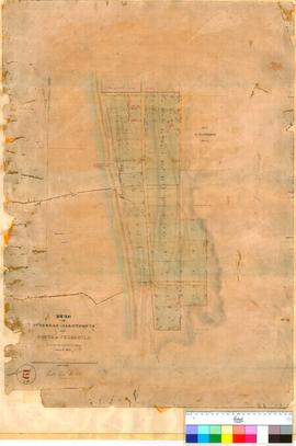 Fremantle 19H. Plan of suburban allotments to the South of Fremantle as surveyed by the Assistant...