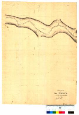 Chain survey of the Collie River by Thomas Watson, sheet 8 [Tally No. 005153].