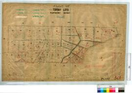Torbay Lots, vicinity of Railway Line from Denmark to Albany by M. Fox, Fieldbooks 84-86 [scale: ...