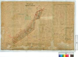 Plan of Denison townsite 6502/12 by J.D. Campbell Fieldbooks 18, 21 and 26 [scale: 3 chains to an...