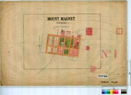 Mount Magnet Sheet 1 [Tally No. 504784].