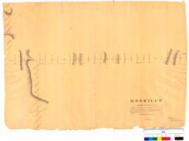 Moorilup (Plantagenet District) by A. Hillman, Albany, sheet 4 [undated, Tally No. 005274].