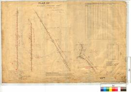 Plan of Mingenew, Yaragadee Roads by G.M. Nunn [scale:10 chains to an inch].