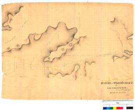 Survey of Wilsons Inlet etc. Block 2, Sheet 3 by G.E. Warburton [Tally No. 005312].