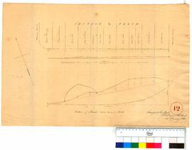 Plan of Section L, Perth. (between Barrack & Spring St.) by A. Hillman [Tally No. 005350].