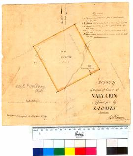 Survey of 11 acres of land at Nalyarin, applied for by L.J. Bayly [Tally No. 005241].