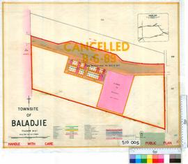 Baladjie [Tally No. 510005].