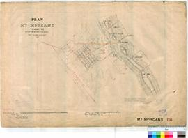 Mt Morgans 195. Plan of Mt Morgans Townsite - Mt Margaret Goldfield showing Town Lots and mining ...