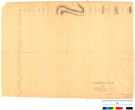 Moorilup (Plantagenet District) by A. Hillman, Albany, sheet 2 [undated, Tally No. 005272].