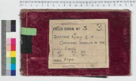 G.A. Lefroy Field Book No. 3. Containing surveys in the districts Eucla