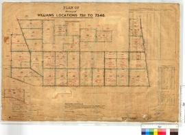 Survey of Locations 7311-7340 by C. Crossland, Fieldbook 80 [scale: 20 chains to an inch].