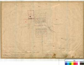 Tammin 183. Plan of Tammin showing Lots 1-44 bounded by Ridley, Donnan, Booth and Strang Streets. Walston, Draper, Jameson and Britton Streets. Railway Station Yard shown. By G.M. May [scale: 3 chains to an inch].