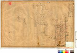 Harvey Agricultural Area lots by C.J. McMahon, Fieldbook 6 (Vicinity of Huxle, Clifton, etc.), la...
