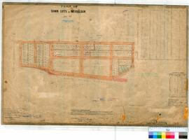 Merredin 54/3. Plan of Town Lots at Merredin (Corr. 8046/09). Later alterations of Lots and road ...
