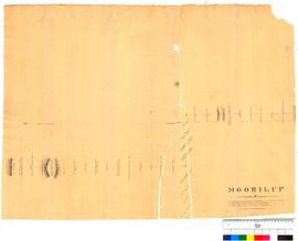 Moorilup (Plantagenet District) by A. Hillman, Albany, sheet 9 [undated, Tally No. 005279].