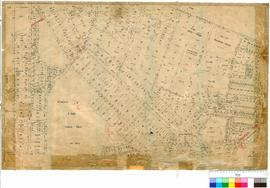 Albany 30/22. Albany Sheet 2. Shows area between Campbell and MacDonald Roads. Includes Mt Melvil...