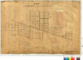 Survey of Locations 6825, 6831-6847, etc, vicinity of Coomelberrup Lake, by H. Hartung [scale: 20 chains to an inch].