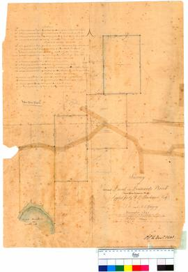 Survey of land on Lennards Brook, Swan River Location 96 by J.W. and A.C. Gregory [Tally No. 0051...