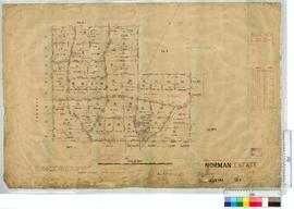 Sub-division of location 12. Norman Estate by T. Beasley, Fieldbook 20, 83 [scale: 16 chains to an inch].