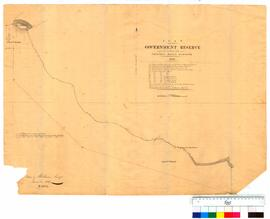 Plan of the 50 acre locations on the southern side of Princess Harbour by A. Hillman (Stuarts Head to Point Limeburner) [Tally No. 005325].