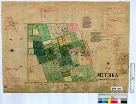 Muchea Sheet 2 [Tally No. 504795].