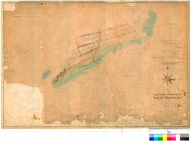 Fremantle 19L. Allotments in and near North Fremantle. P. L. Snell Chauncy, Assistant Surveyor, M...