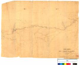 Paced survey of road between Wellington and Williams districts by F.T. Gregory [Tally No. 005221].
