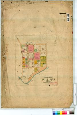 Williams Sheet 1 [Tally No. 505265].