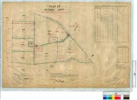 Victoria Locations 6305-6310 and 6230 by D. Rutherford, Fieldbook 64, survey adjusted 1913 [scale...