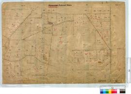 Kwolyin (Sheet 3) Agricultural Area (Mt Caroline) by W.J. Roe and W. Hepburn, W.J. Rae, G.J. Welsh, W.H. Brown [scale: 20 chains to an inch].