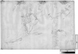 Canning Stock Route - plan of original survey by A.W. Canning near Highlere Hills, c. 1906 [Tally...