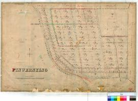 Pinwernying 58/1. Plan of Pinwernying Townsite showing Lots 1-90 inclusive, bounded by Great Sout...