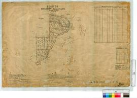 Manjimup lots 223-275 (Timber Tramway from no. 1 Mill and Bridgetown to Wilgarrup Railway Extensi...